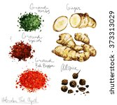 watercolor food clipart   spices   Shutterstock . vector #373313029