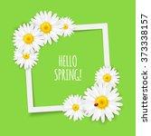 spring flowers frame... | Shutterstock .eps vector #373338157