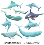 vector set of isolated... | Shutterstock .eps vector #373338949