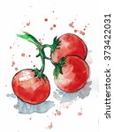 three tomatoes on a branch.... | Shutterstock . vector #373422031