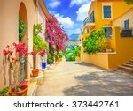 street in kefalonia  greece | Shutterstock . vector #373442761