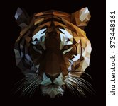 low poly vector tiger...   Shutterstock .eps vector #373448161