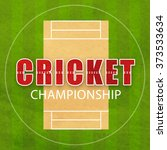 cricket championship concept... | Shutterstock .eps vector #373533634