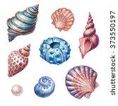 Nautical Elements  Sea Life ...