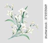 Crocosmia Flowers