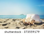 shells on sandy beach | Shutterstock . vector #373559179