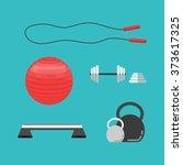 set of flat sports equipment... | Shutterstock .eps vector #373617325