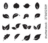 collection of leaf icons. black ... | Shutterstock .eps vector #373652509