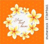 plumeria. exotic flowers. frame ... | Shutterstock .eps vector #373695661