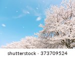 Japanese Spring Scenic With...