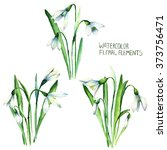 Snowdrop Card For You Flower...