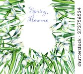 snowdrop  watercolor floral set.... | Shutterstock . vector #373756534
