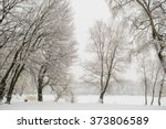 chrismas snow morning  | Shutterstock . vector #373806589