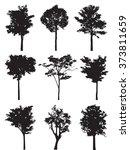 set of nine trees vector... | Shutterstock .eps vector #373811659