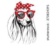 dog with long ears portrait in... | Shutterstock .eps vector #373824391