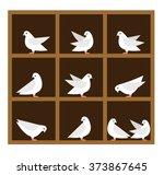 vector pigeonhole principle... | Shutterstock .eps vector #373867645