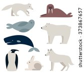 arctic and polar animals vector ... | Shutterstock .eps vector #373867657
