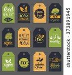 vector eco organic bio logo... | Shutterstock .eps vector #373891945