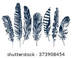 7 hand drawn feathers on white... | Shutterstock .eps vector #373908454