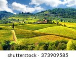 Landscape In Tuscany  Italy