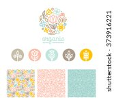 vector set of logo design... | Shutterstock .eps vector #373916221