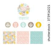 vector set of logo design... | Shutterstock .eps vector #373916221