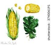 watercolor food clipart   corn... | Shutterstock . vector #374006191