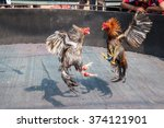 two cocks in fight | Shutterstock . vector #374121901