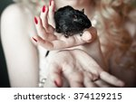 black mouse on the hand   Shutterstock . vector #374129215
