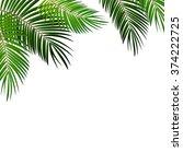 Palm Leaf On White Background...