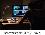 back view of modern programmer... | Shutterstock . vector #374227075