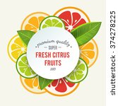 banner with stylized citrus... | Shutterstock .eps vector #374278225