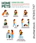 Stock vector vector flat illustration infographic of caring about pets dog bathing washing dressing combing 374341747
