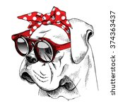 bulldog portrait in a red... | Shutterstock .eps vector #374363437