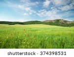 Green Spring Meadow In Mountain....