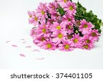 Bouquet Of Pink Chrysanthemum...