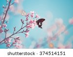 cherry blossom in wild and... | Shutterstock . vector #374514151