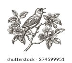 original ink and pen drawing ... | Shutterstock . vector #374599951