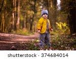 little caucasian boy playing in ... | Shutterstock . vector #374684014