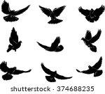 dove  flying dove black and... | Shutterstock .eps vector #374688235