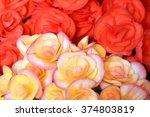 begonia flower in the garden ... | Shutterstock . vector #374803819