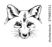 fox portrait. vector black and... | Shutterstock .eps vector #374882311