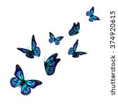 vector butterfly with hearts on ... | Shutterstock .eps vector #374920615