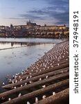 prague castle evening | Shutterstock . vector #374948191