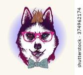 hipster husky dog in sunglasses.... | Shutterstock .eps vector #374962174