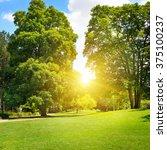 summer park with beautiful... | Shutterstock . vector #375100237