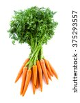 Bunch Of Fresh Carrots With...