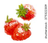 watercolor and strawberry leaf. ... | Shutterstock . vector #375322309