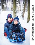 two happy brothers on sled | Shutterstock . vector #375346015