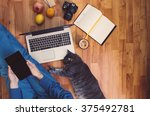 Stock photo friendly workspace man working on the floor with his grey cat 375492781
